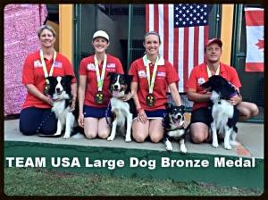 Team USA Large - Bronze