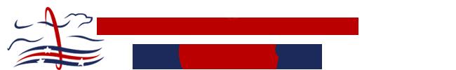 Team USA – Americas Y Caribe Agility